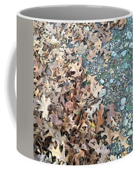 Ozark Autumn. Ozarks Coffee Mug featuring the photograph Ozark Autumn by James Pinkerton