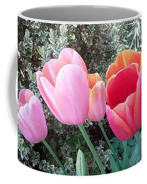Flowers Coffee Mug featuring the photograph P9532 by Steve Herndon