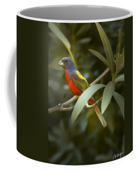 Painted Bunting Coffee Mug featuring the photograph Painted Bunting Male by Phill Doherty