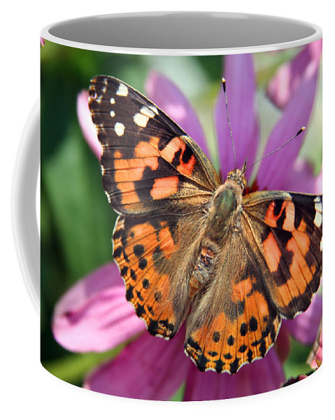 Painted Lady Coffee Mug featuring the photograph Painted Lady Butterfly by Margie Wildblood