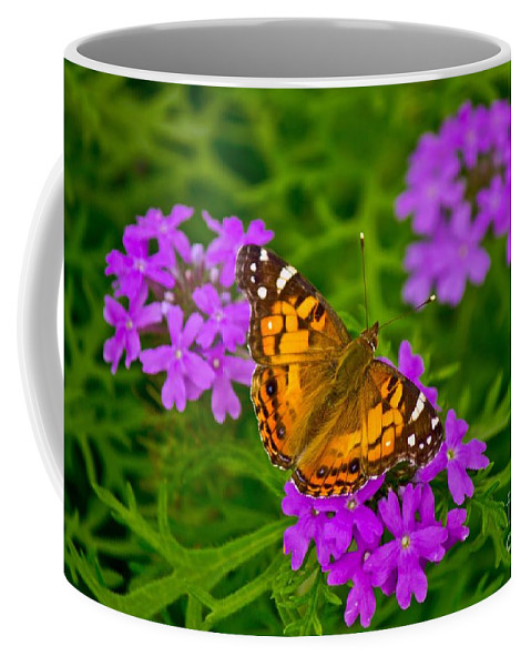 Michael Tidwell Photography Coffee Mug featuring the photograph Painted Lady On Purple Verbena by Michael Tidwell