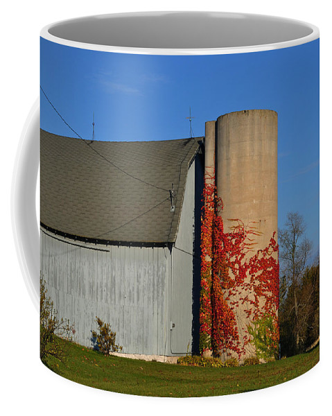 Fall Coffee Mug featuring the photograph Painted Silo by Tim Nyberg