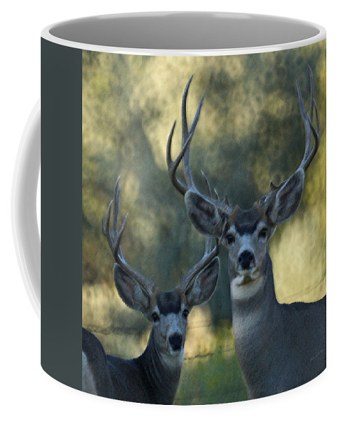 Deer Coffee Mug featuring the photograph Pair Of Bucks by Ernie Echols