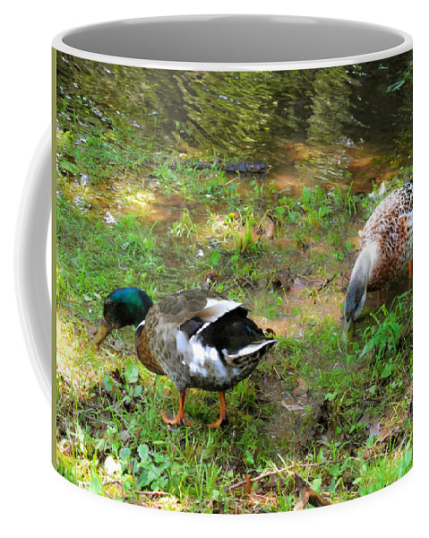 Beak Coffee Mug featuring the painting Pair Of Mallard Duck 6 by Jeelan Clark