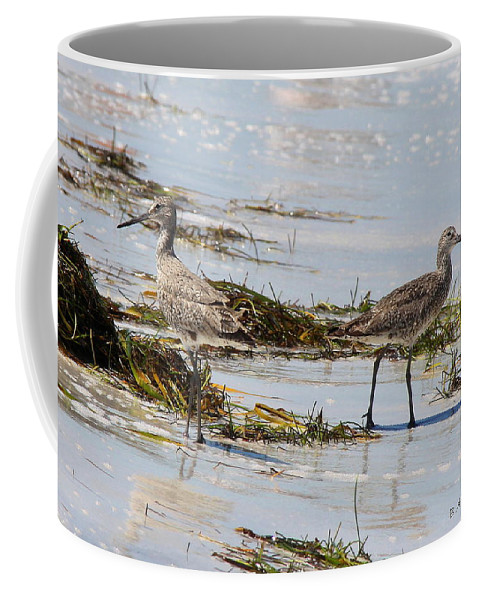 Willets Coffee Mug featuring the photograph Pair Of Willets by Barbara Bowen