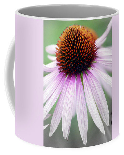 Flowers Coffee Mug featuring the photograph Pale Grey by Marty Koch
