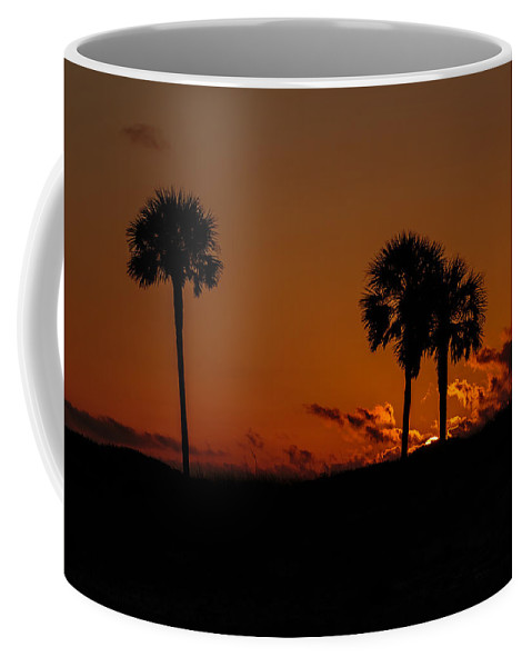 Clouds Coffee Mug featuring the photograph Palm Paradise by Gary Oliver