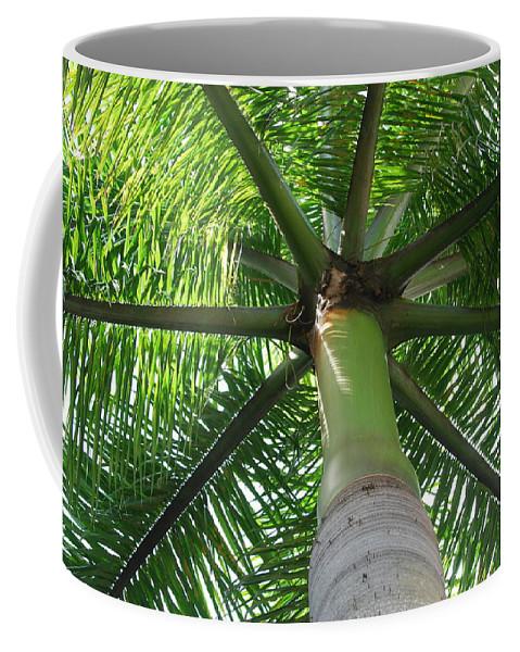 Macro Coffee Mug featuring the photograph Palm Unbrella by Rob Hans