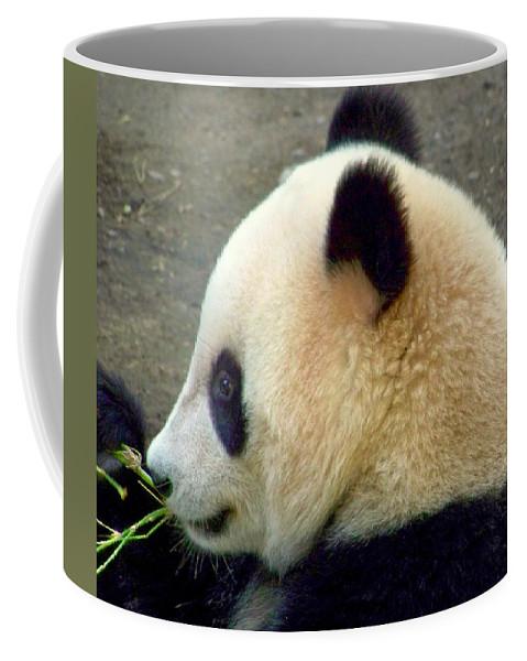 Wildlife Coffee Mug featuring the photograph Panda Snack by Karen Wiles