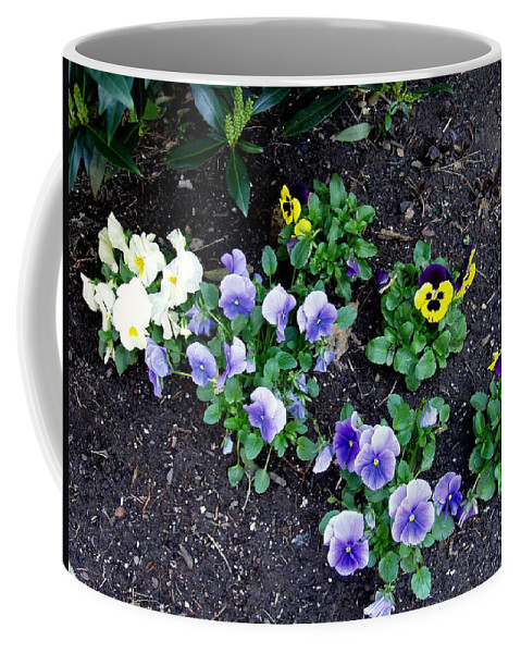 Flowers Coffee Mug featuring the photograph Pansies by Deborah Crew-Johnson
