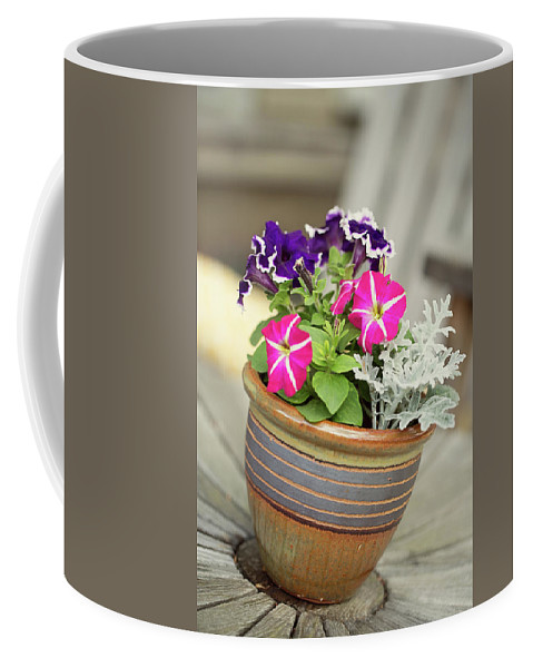 Flowers Coffee Mug featuring the photograph Pansies by Sue Collura