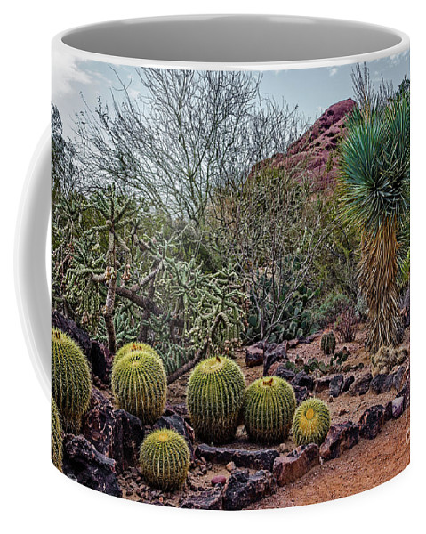 Jon Burch Coffee Mug featuring the photograph Papago And Barrels by Jon Burch Photography