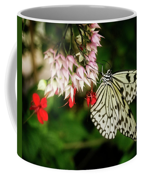 Butterfly Coffee Mug featuring the photograph Paper Kite by Chrystal Mimbs