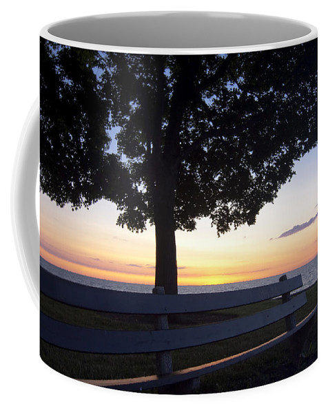 Coffee Mug featuring the photograph Park Bench At Dawn by Sven Brogren