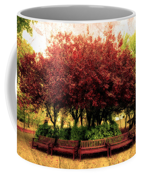 Autumn Coffee Mug featuring the photograph Park by Svetlana Sewell
