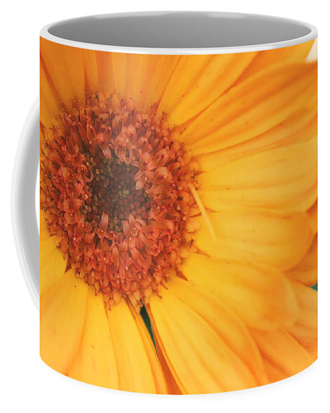 Flowers Coffee Mug featuring the photograph Partly Sunny by Linda Sannuti