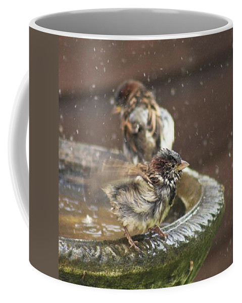 Nature Coffee Mug featuring the photograph Pass The Towel Please: A House Sparrow by John Edwards
