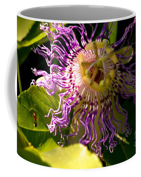 Flower Coffee Mug featuring the photograph Passionflower by Robyn King