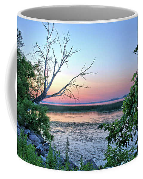 Tree Coffee Mug featuring the photograph Pastel Clear Lake 3 by Bonfire Photography