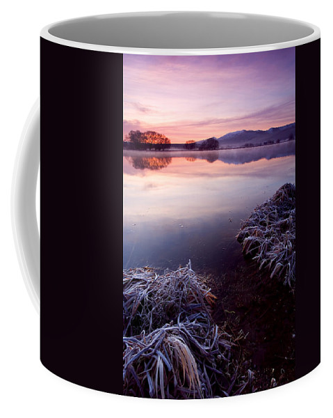 Lake Coffee Mug featuring the photograph Pastel Dawn by Mike Dawson