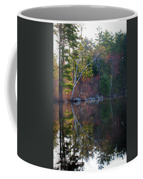Scenic Tours Coffee Mug featuring the photograph Pastels In Reflection by Skip Willits