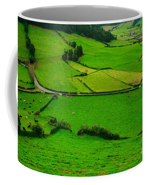 Dairy Coffee Mug featuring the photograph Pastures In The Azores by Gaspar Avila