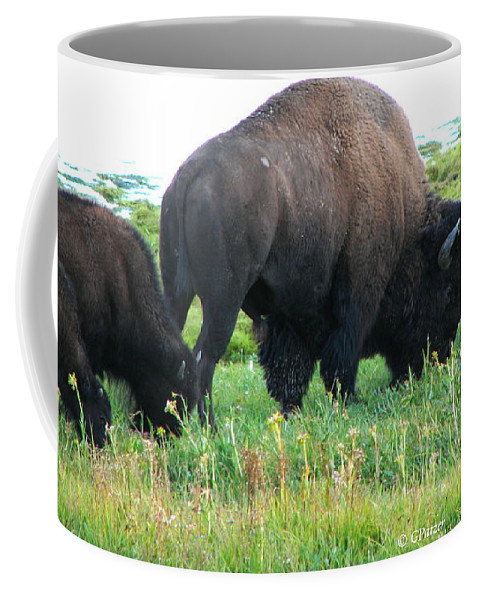 Art For The Wall...patzer Photography Coffee Mug featuring the photograph Patch Of Grass by Greg Patzer