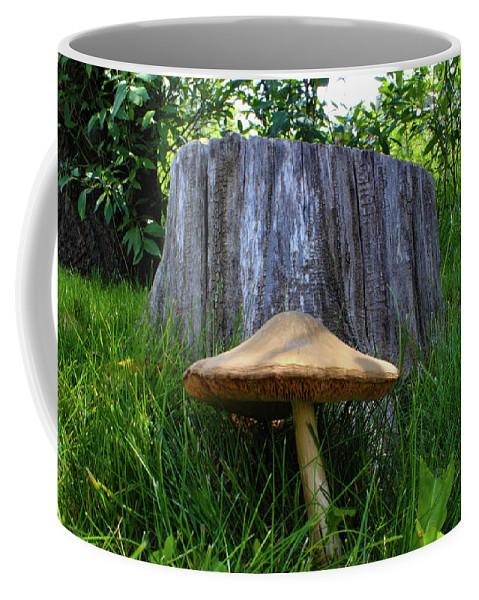 Mushroom Coffee Mug featuring the photograph Path of Mushrooms by Shane Bechler