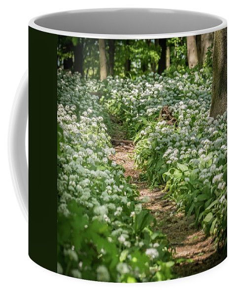 Woodland Coffee Mug featuring the photograph Path Through A Deciduous Forest, Wild Garlic by Stefan Rotter