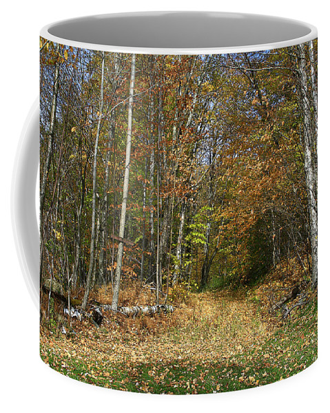 Nature Coffee Mug featuring the photograph Path To Joiner Brook by Deborah Benoit