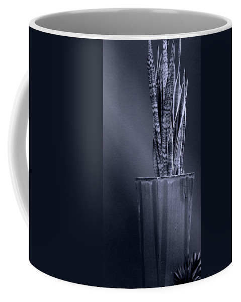 Black And White Coffee Mug featuring the photograph Patterns Of Woven Light by Holly Kempe
