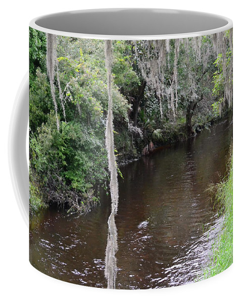 Creek Coffee Mug featuring the photograph Paynes Creek by Carol Bradley