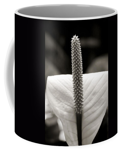 Flower Coffee Mug featuring the photograph Peace Lily by Marilyn Hunt