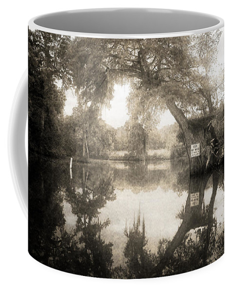 Water Coffee Mug featuring the photograph Peaceful Evening by Scott Pellegrin