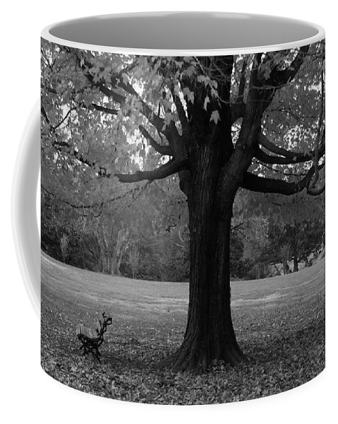 Maymont Coffee Mug featuring the photograph Peaceful Park by Tina Meador