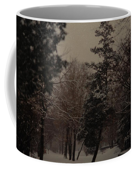 Lights Coffee Mug featuring the photograph Peaceful Snow Dusk by Rob Hans
