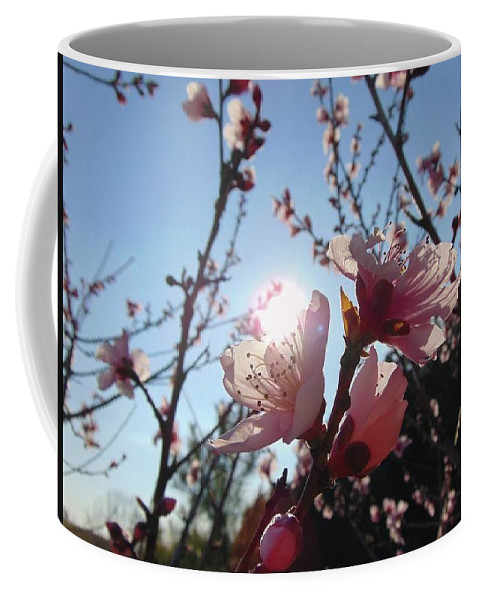 Spring Coffee Mug featuring the photograph Peach Blossom by Bryce Clark