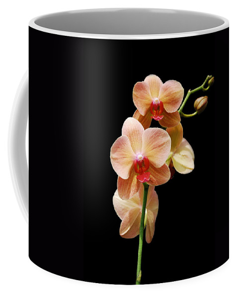Orchids Coffee Mug featuring the photograph Peach Orchids by Michael Peychich