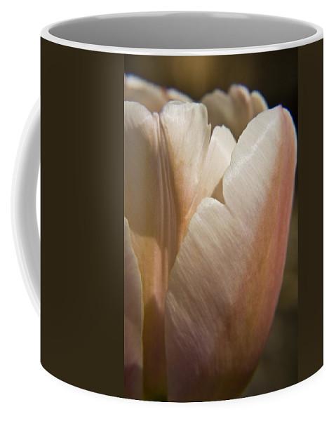 Peach Coffee Mug featuring the photograph Peach Tulip by Teresa Mucha