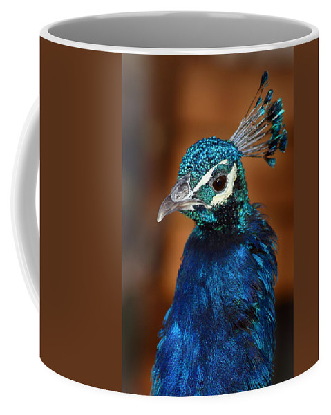 Peacock Coffee Mug featuring the photograph Peacock by Anthony Jones