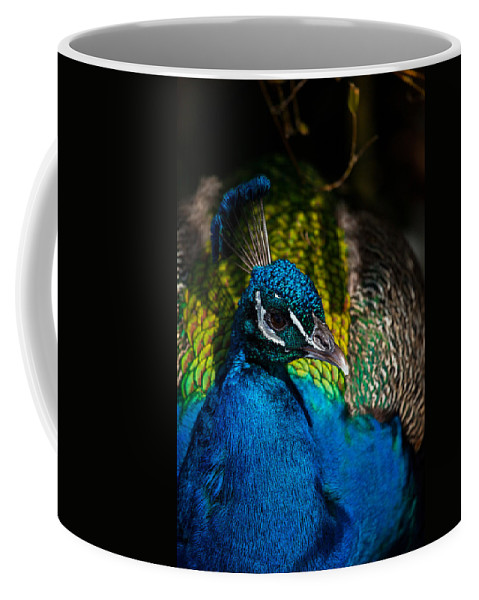 Peacock Coffee Mug featuring the photograph Peacock Closeup by Karol Livote