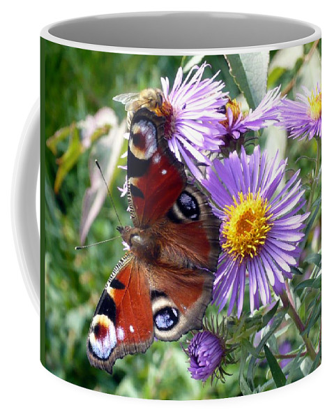 Peacock Coffee Mug featuring the photograph Peacock With Bee by Helmut Rottler
