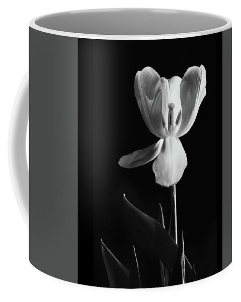 Black And White Coffee Mug featuring the photograph Peak Inside by Joy Schmitz