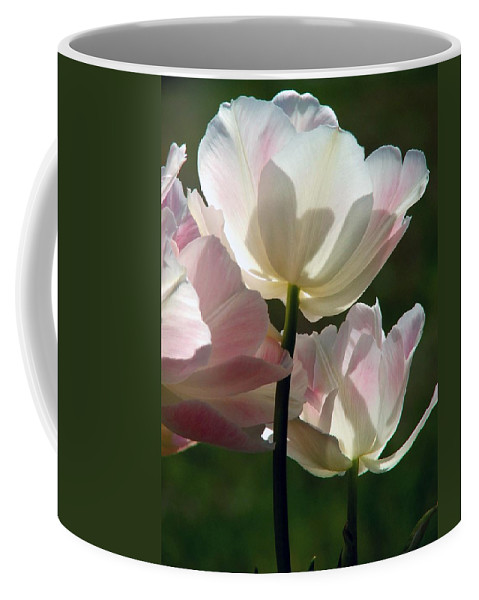 Flowers Coffee Mug featuring the photograph Pedals Of Sunlight by Robert Meanor