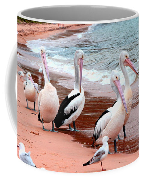 Australia Coffee Mug featuring the photograph Pelican 5.0 Pearl Beach by Giro Tavitian