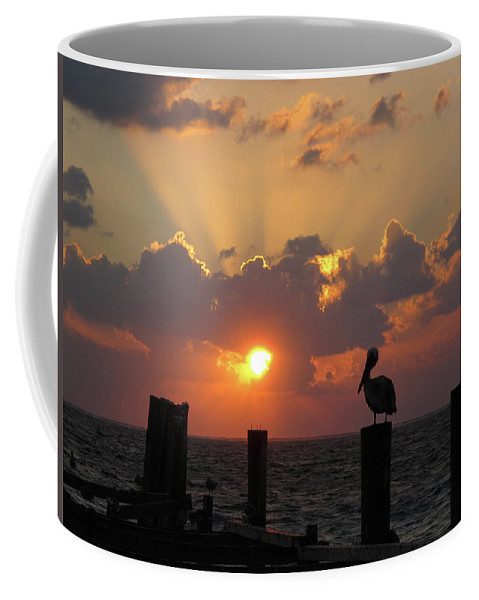 Sunrise Coffee Mug featuring the photograph Pelican Dawn by Paul Westcott