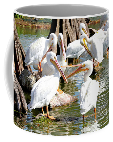 Fighting Birds Coffee Mug featuring the photograph Pelican Squabble by Carol Groenen