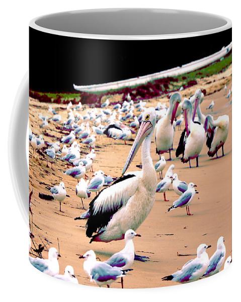 Australia Coffee Mug featuring the photograph Pelicans At Pearl Beach 4.0 by Giro Tavitian