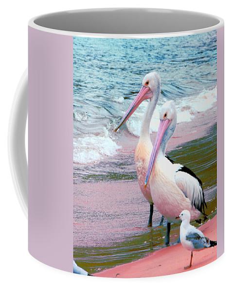 Australia Coffee Mug featuring the photograph Pelicans At Pearl Beach 5.1 by Giro Tavitian