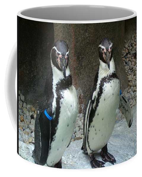 Penguin Coffee Mug featuring the photograph Penguin Duo by Sara Raber